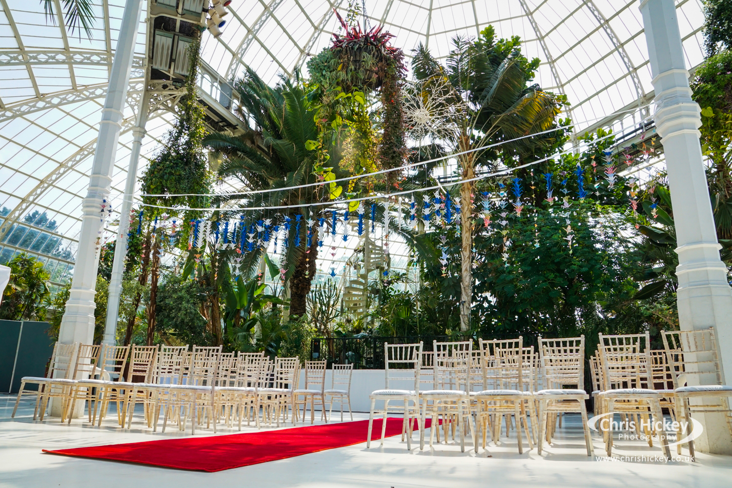Wedding at The Palm House Sefton Park