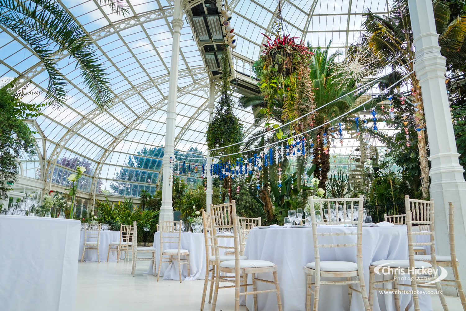 Wedding Photography at the Palm House in Sefton Park